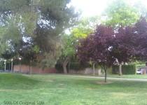 LG enV2 Photo